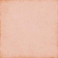Плитка керамическая напольная 24388 ART NOUVEAU Coral Pink 20x20