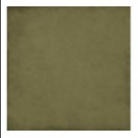 Плитка керамическая напольная 24396 ART NOUVEAU Cypress Green 20x20