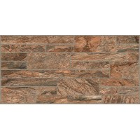 Pave Style 30x60 Brown G-511