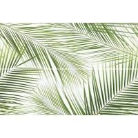 Brennero Tropic 50x75