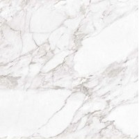 Carrara White Shine RC 60x60