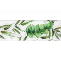 Glass Tropic A 25x75