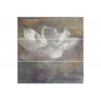 Manteia colour A (3) 60x60